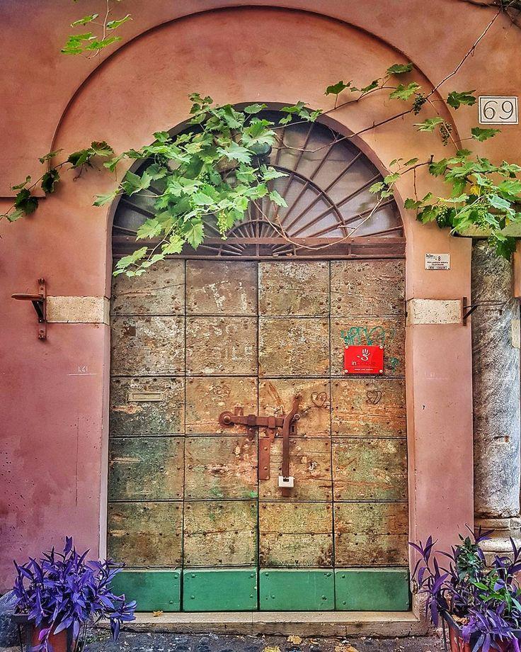 Olha só que amor essa parreira!!!!  . Conseguem ver os cachinhos de uva?  Fiquei encantada com isso! Em pleno centro!!! . Lembre-se que nós fazemos o seu roteiro personalizado em Roma organizamos o seu transfer do/para o aeroporto e também sua hospedagem! info@emroma.com .  Veja mais no Snapchat Em_Roma  #Roma #europe #instatravel #eurotrip #italia #italy #rome #trip #travelling #snapchat #emroma#viagem #dicas #ferias #dicasdeviagem #brasileirospelomundo #viajandopelomundo #visititaly…