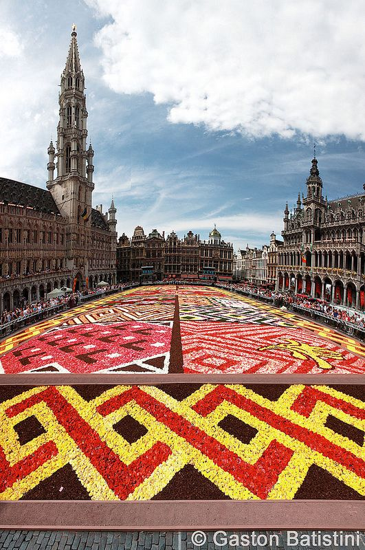 Carpet flowers, Grand Place, Brussels, Belgium
