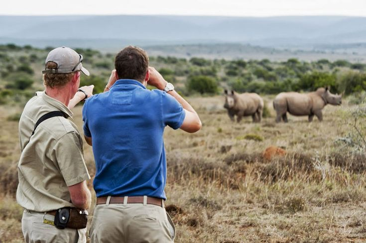 Kwandwe Rhino Watching. Many of these places also contribute greatly to uplifting local communities that have missed out on the growth and development achieved in the big cities.
