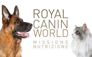 Verosimilmente Vero: MILANO: ROYAL CANIN INCONTRA I PROPRIETARI DI FIDO...