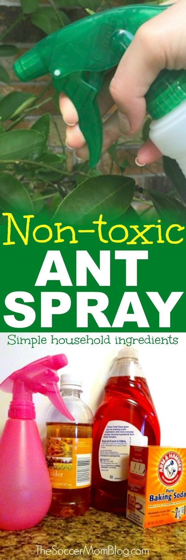 Forget harsh chemicals! This DIY natural ant repellent spray is safe, easy, cheap, and IT WORKS! Safe for use around children and pets.