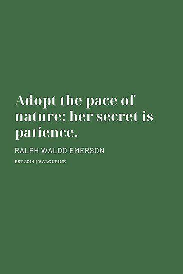 Adopt The Pace Of Nature Her Secret Is Patience Ralph Waldo