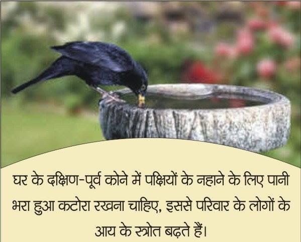 Keep water for birds outside the home in a tub