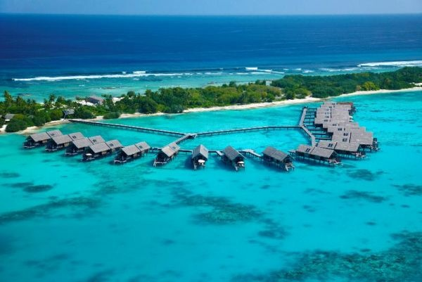 Book Maldives Hotels at affordable price at >> Maldives Resorts, Maldives holiday, maldive island, resorts rates, resort price, honeymoon, hotels, diving, club, surfing, sea, sun, sand, beach --> www.hotacmaldives.com