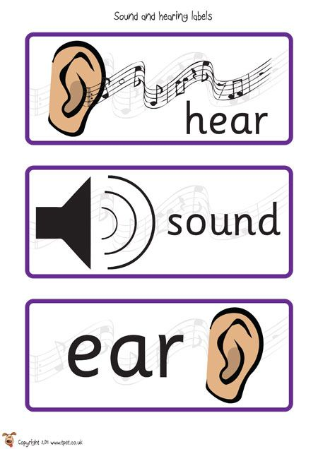 11 best hearing and sound images on pinterest physical science teachers pet sound and hearing posters free classroom display resource eyfs ks1 ccuart Gallery