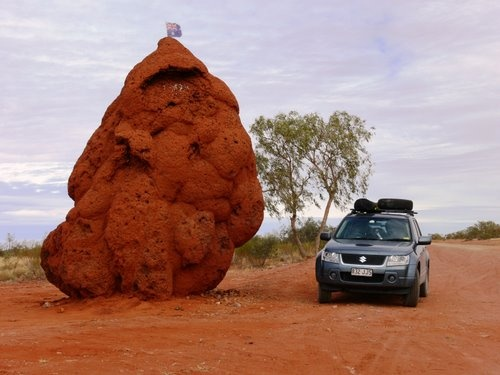 Australian Outback - An Ant Hill!
