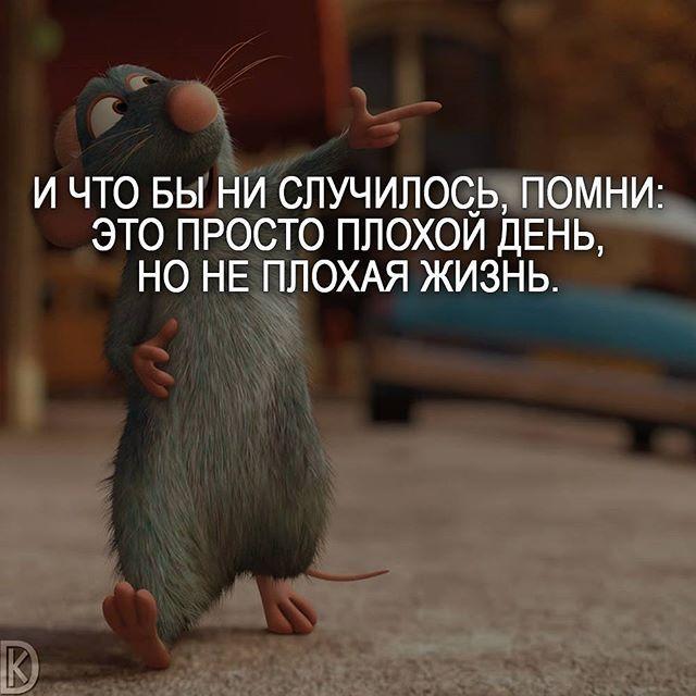 Улыбайся, даже если твое сердце болит. Улыбайся, даже если тебе больно. ©Чарли Чаплин  .  Включайте уведомление о новых публикациях Очень удобная штука  .  #мудрость #философия #саморазвитие #цитаты #мотивация #цитатывеликихмужчин #позитив #смыслжизни #мыслимысли #правильныеслова #счастьежить #мысли_на_ночь #deng1vkarmane