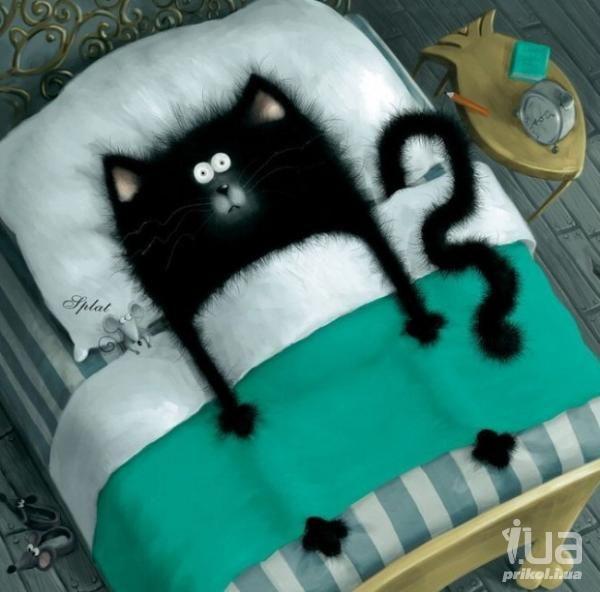 Rob Scotton ©, корова, кот, овца, рисунки