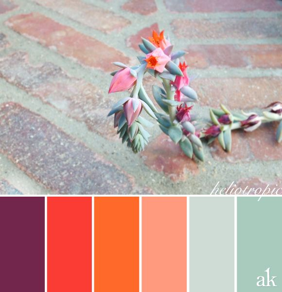 A summer-succulent-inspired color palette