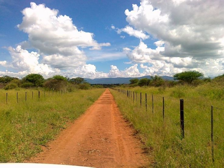 PROPERTY LOUIS TRICHARDT - LOUIS TRICHARDT Farm LOUIS TRICHARDT