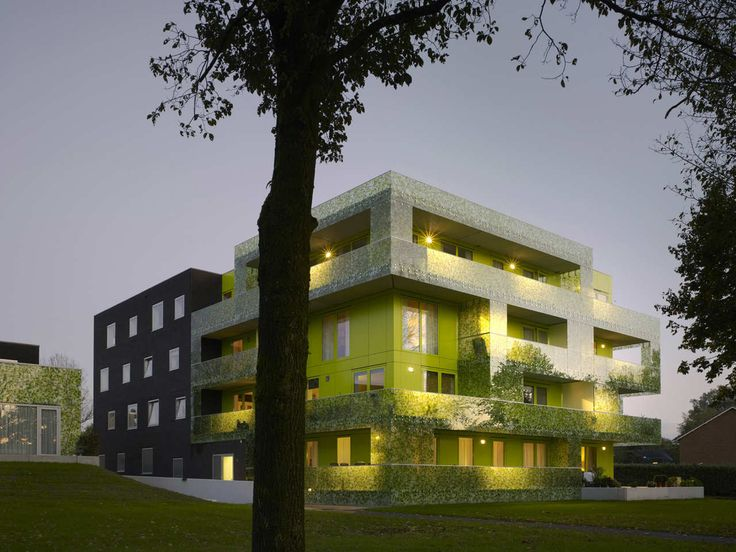 Image 1 of 20 from gallery of Gingko Project / Casanova + Hernandez Architects. Photograph by Christian Richters