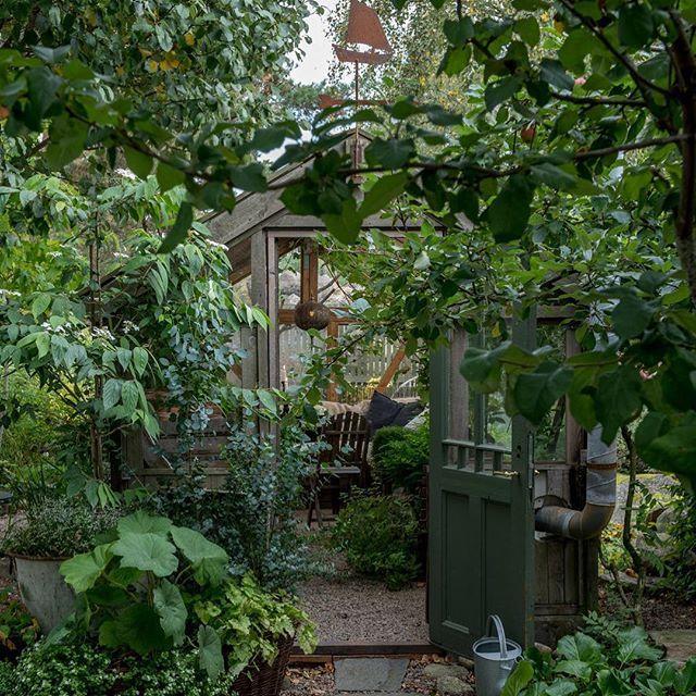 Nytt blogginlägg med bilder från fantastiskt inspirerande @lillagrona_viktoria . Tack @trip2garden för att ni öppnar upp och delar med er av era underbara trädgårdar. New bloggpost up with photos from the beautiful garden IF @lillagrona_viktoria . - - #gardeninspiration #trädgårdsinspiration #gardendesign #trädgårdsdesign #havedesign #hagedesign #haveglæde #hageglede #tuininspiratie #gartengestaltung