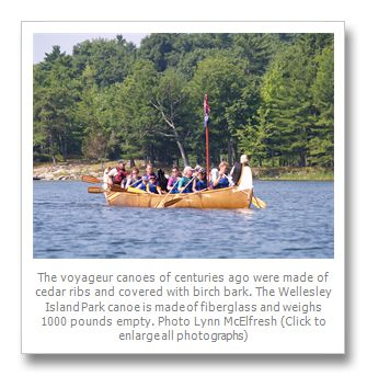 Have you paddled a Voyageur Canoe? > Thousand Islands Life Magazine > Thousand Islands Life Magazine All Archives