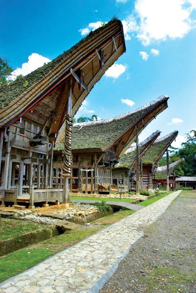 Tongkonan is the traditional house of the Torajan people. It is made of wood without the use of metal elements such as nails. All elements are fitted together using clever combinations of joints and fittings. The upturned ends of each roof are supposedly representative of the horns of a bull, but also contribute to keeping the house cooler during dry seasons.
