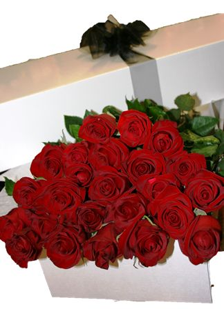 A white lidded gift box with 24, long stem red roses.