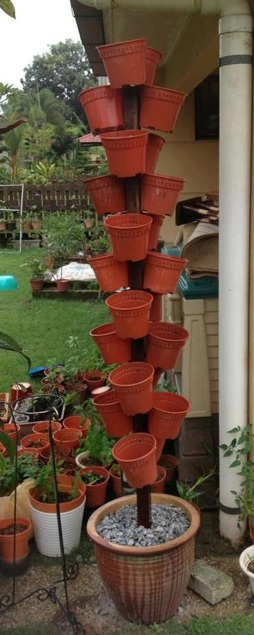 Flower pot tree! This could probably be done using Poundland's bamboo stick & plant pot!