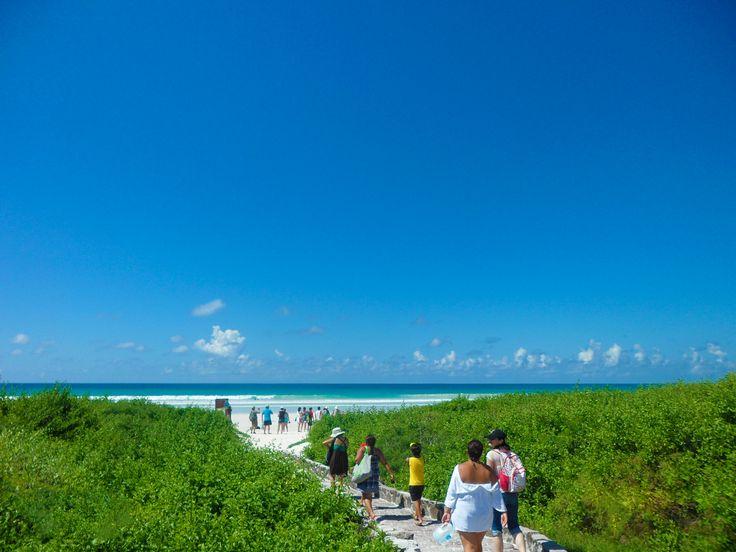El largo camino a Tortuga Bay, Galápagos