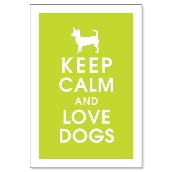 keep calm: Doggie, Keepcalm Lifeteams, Animals Dogs, 1 Puppy, Keep Calm, Calm Quotes