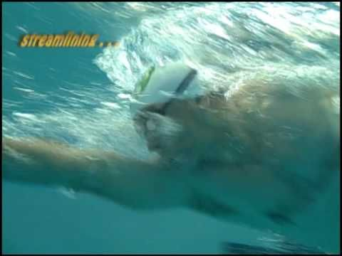 http://www.SynergySwimming.com. This entertaining freestyle swimming technique video shows you how to swim faster. The quickest way to increase your swimming stroke speed and freestyle technique is by learning how to decrease drag and inefficiency and not by increasing power. The drills and instructions shown can be used whether you are coaching...