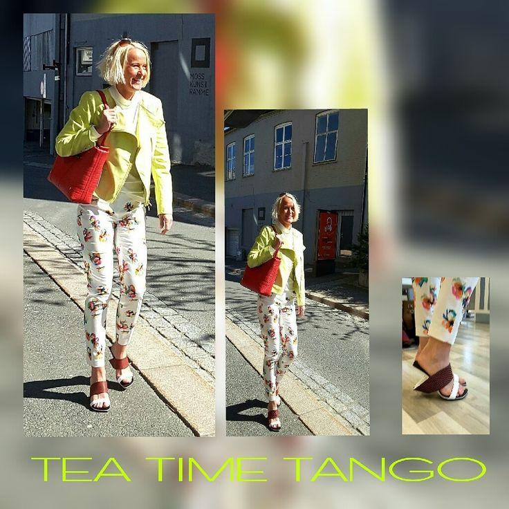 Tea Time Tango  Moss