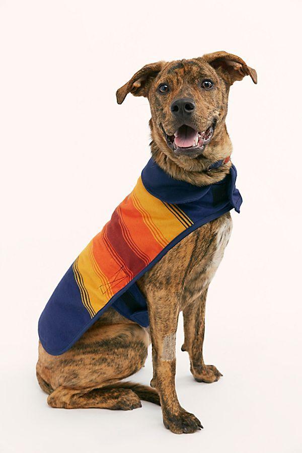 Pendleton Grand Canyon Dog Coat Dog Training Dog Supplies Dog