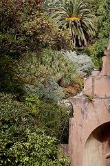 Giardini Botanici Hanbury-13