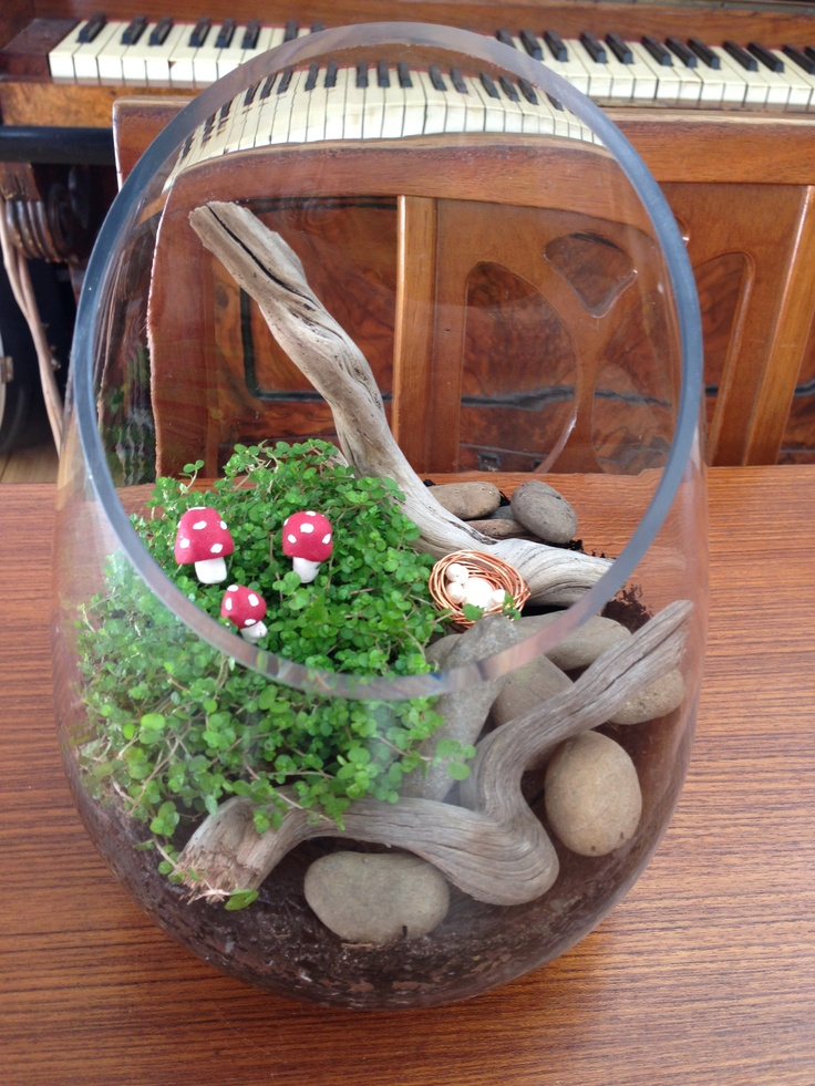 Driftwood and toadstool fairy garden @Zamfyre Designs.
