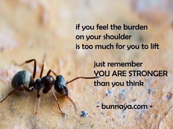 If you feel the burden in your shoulder too much for you to lift just remember that you are stronger than you think you are