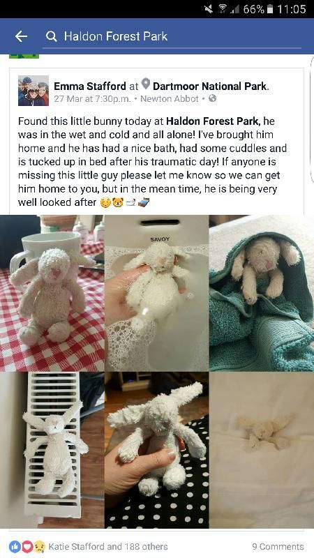 Found on 27 Mar. 2016 @ Haldon forest. Found this little friend at Haldon Forest last week :) Visit: https://whiteboomerang.com/lostteddy/msg/apjn7z (Posted by Emma on 04 Apr. 2016)