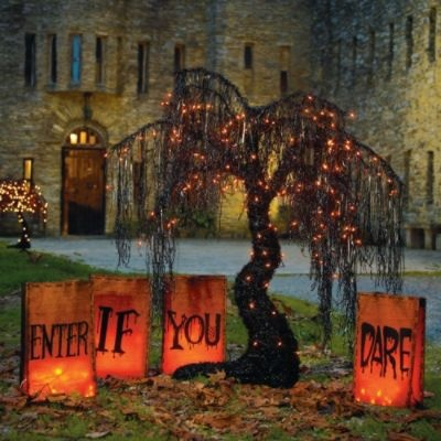 "'Enter If You Dare' Luminaries:  Put the neighbors on notice with giant pre-lit Enter If You Dare Luminaries. Each bag in this set of 4 measures a can't-miss 20""H, so would-be visitors are sure to get the message.: Brown Paper Bags, Halloween Decor, Halloween Trees, Hallows Eve, Fall Halloween, Halloweendecor, Halloween Fal, Halloween Yard, Halloween Ideas"