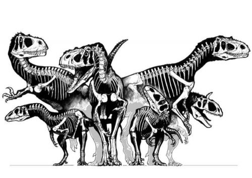 coloring page group of dinosaurs skulls