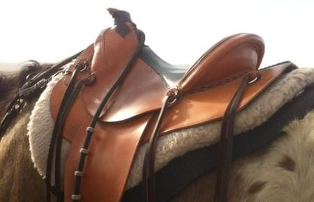 A modern, western treeless saddles for sale. For distance and pleasure riding.