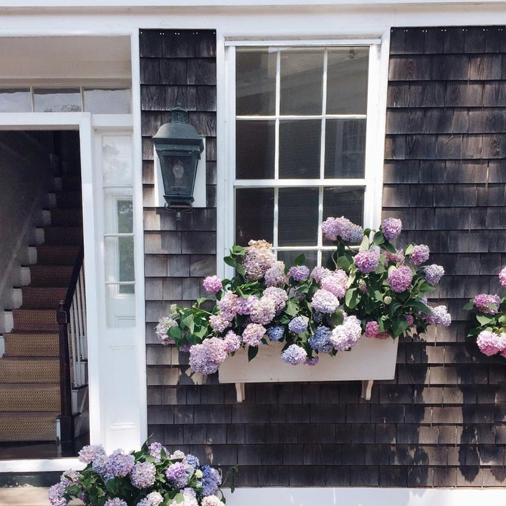 Hampton Inn And Suites Cape Cod: 3785 Best Cape Cod/Nantucket Islands And Homes Images On