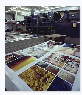 Imprenta Online Barata - Impresión Variable - Imprenta