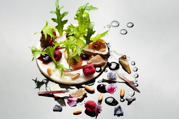 arte gastronomico (21)