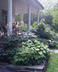 Home Tours: - Martha Stewart Love the plantings