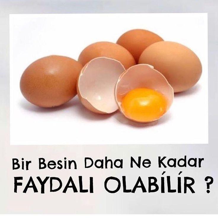 Yumurta cok yoğun miktarda A D E K vitaminleri, tüm B vitaminlerini, Kolin, Selenyum, PROTEİN ve OMEGA-3 İçerir Bir yumurta günlük protein ihtiyacınızın %11 ini, Selenyum ihtiyacınızın %20' sini karşılar. İcerdiği yoğun miktarda protein ile kilo vermenizi kolaylaştırır, kas yapımını arttırır. Ayrıca Kalp , Sinir Sistemi ve Cilt Sağlığını da Korumaktadır. #öncesağlık
