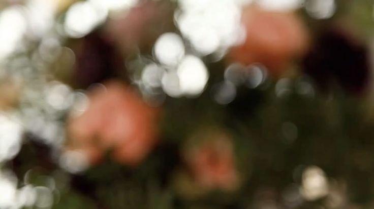 Видео-отчет с мастер-класса по Свадебной фотографии #whitephotoschool #moscow #photography #weddingphotography #canon #whitestudio #happiness #love #weddingphotographer #школафотографии