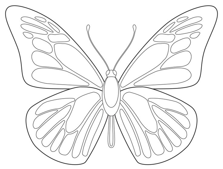 art projects for kids free butterfly drawing download