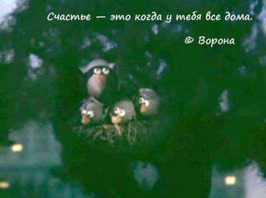 Жизненные цитаты из любимых мультфильмов
