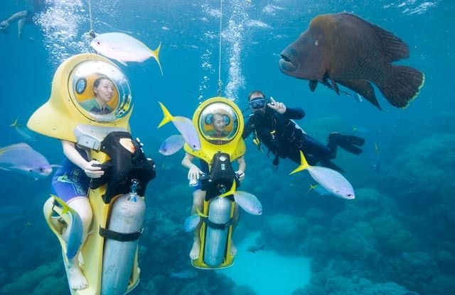 Situated on the outer edge of the Great Barrier Reef, our spacious platform features undercover seating and tables to enjoy a delicious buffet lunch, full bar facilities, a swimming enclosure for children, change rooms with freshwater showers, sundeck, and scuba diving facilities with a semi-submerged platform. #reeftour #cairns #scubadiving #CairnsTour