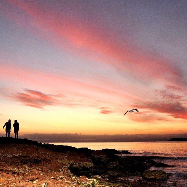 Sunrise at Coles Bay on the East Coast via http://buff.ly/1CRnl85?utm_content=buffer82bc2&utm_medium=social&utm_source=pinterest.com&utm_campaign=buffer #Travel #Tasmania #sunrise