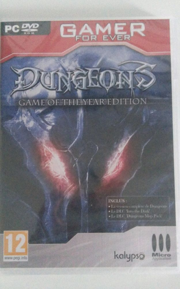 DUNGEONS Edition Game of The Year Edition - PC - NEUF