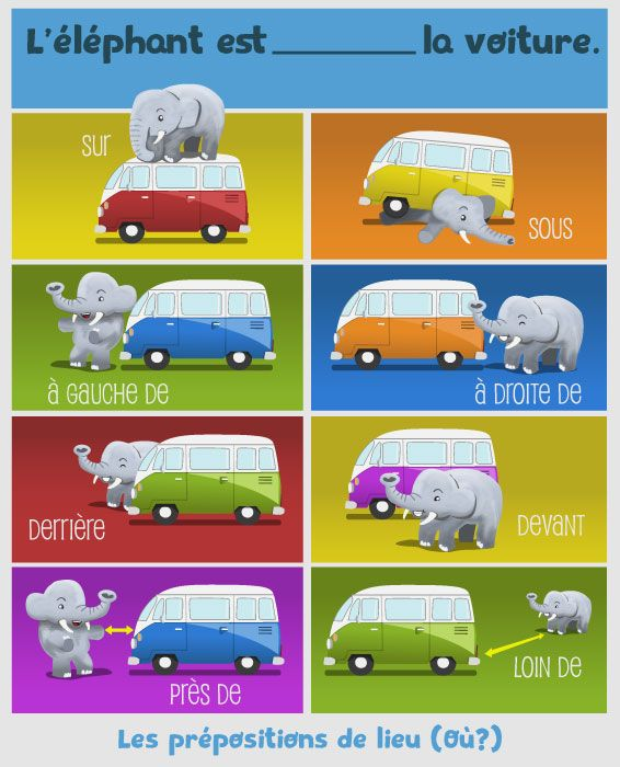 Où est l'éléphant ?