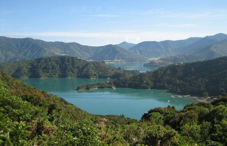 The Queen Charlotte Track is a 71km walk that winds its way between the Queen Charlotte and Kenepuru Sounds in New Zealand's Marlborough region. While 71km sounds quite daunting -- especially for s...