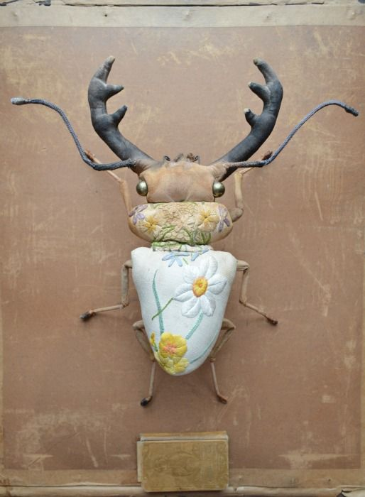Winter stag beetles….http://www.mister-finch.com/