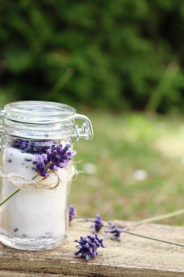 Lavendel är en fantastisk växt som doftar helt underbart. Man kan även baka med lavendel. Ta in lavendeln och låt den torka över natten och gör ett fantastiskt socker. Sen luktar det ju supergott med i hela huset. Det är något speciellt att plocka saker från sin egen trädgård.  Man kan använda [...]