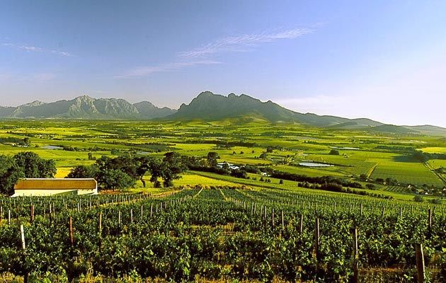 Paarl Wine Route The Paarl Wine Route, the second oldest wine route in South…