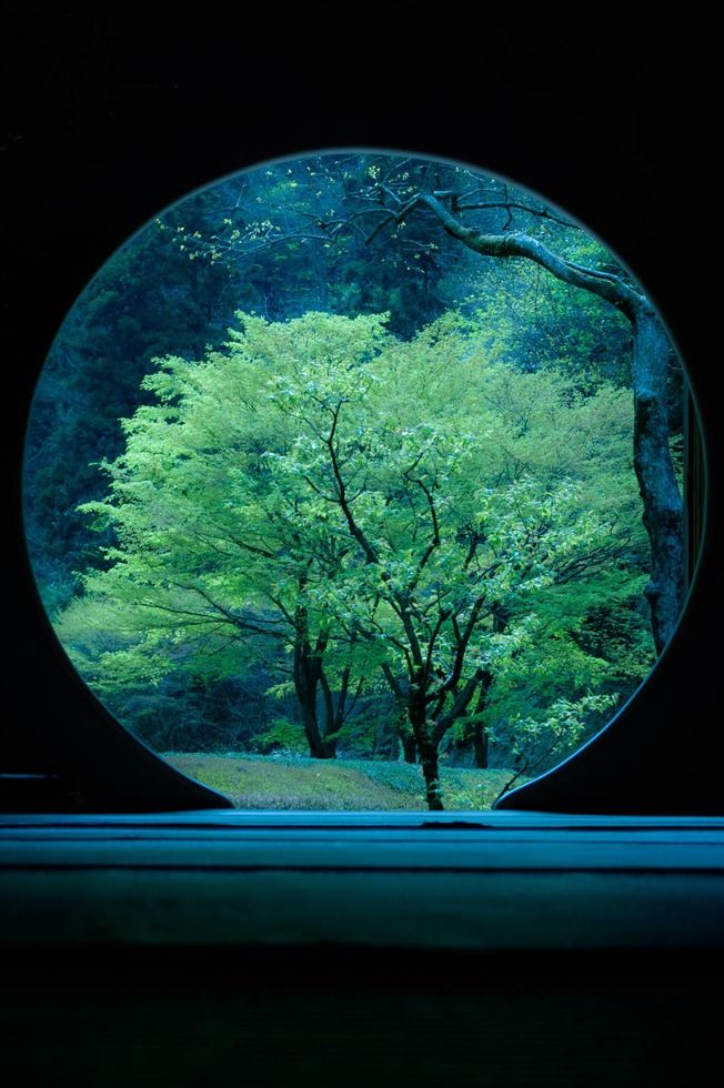 Beauty of the tea house by Yasuhiko Yarimizu Japan
