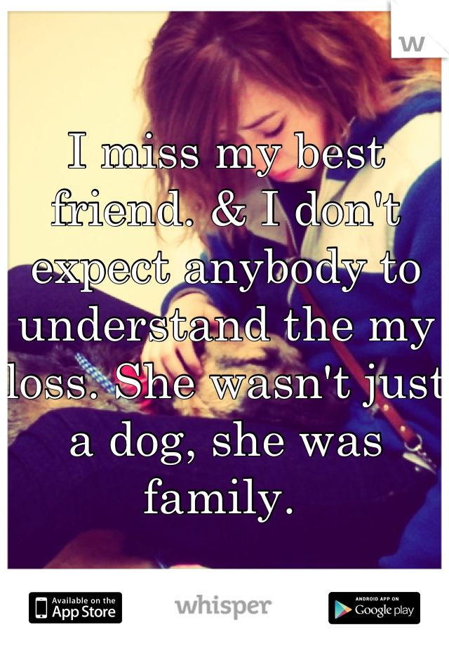 My Dog Died Quotes Death Quotes About Dogs Quotesgram